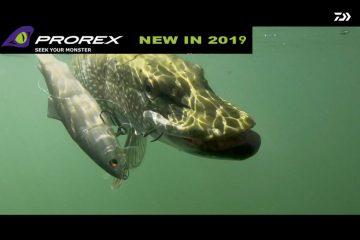PROREX 2019 lures demo - teaser