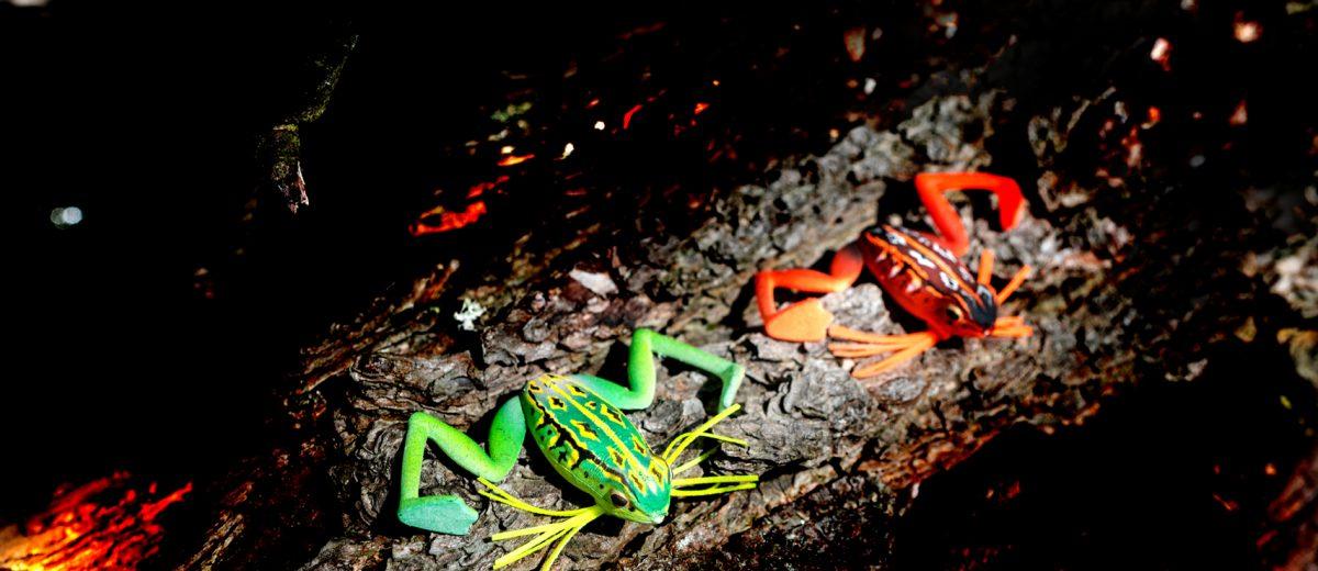 Micro Frog Lure by Daiwa - Prorex