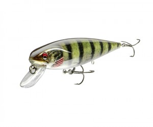 PROREX - Minnow SR - Live Perch - DAIWA by PROREX