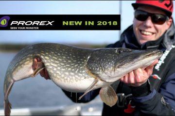 Daiwa Prorex Produkte 2018 Test